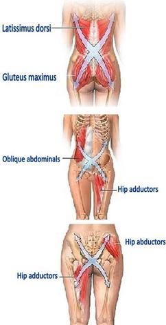 leglength - Fixing Your Leg Length Issues