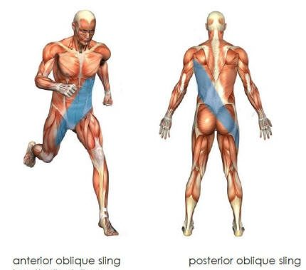 5 Things You Didn't Know About Core Training