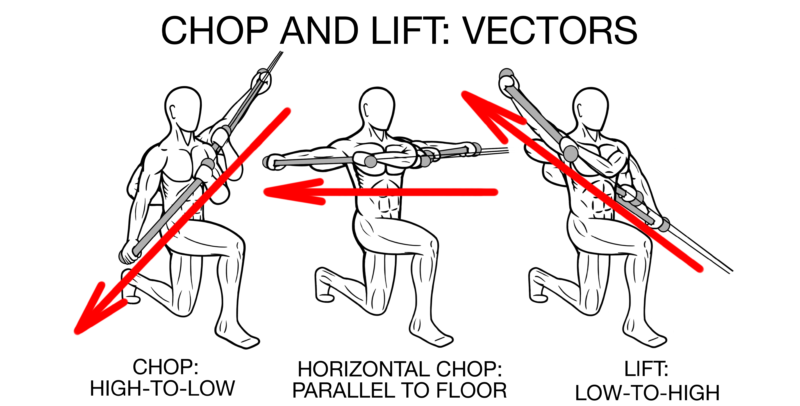 PreHab Exercises Chop and Lift Vectors Directions e1511823110630 - The Best Core Exercises You Aren't Using!