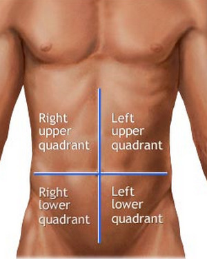 abdominal quadrants - Don't Elevate Your Heels On Squats
