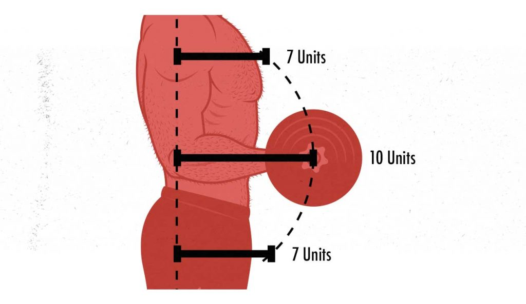 moment arms biceps curl diagram illustration 1 1024x593 1 - Movement & Muscle Building Workouts